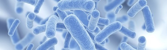 Sources of Legionella